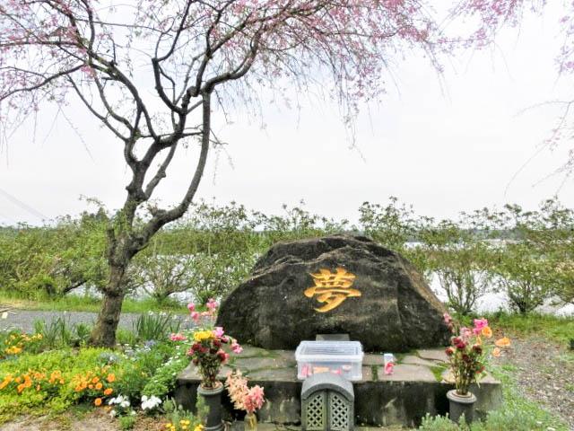 Pet cemetery-Joint memorial